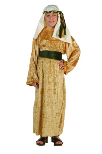 Child's Deluxe Wiseman Costume Size Small (4-6)