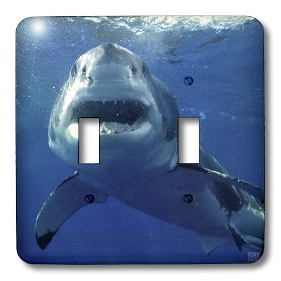 3dRose LLC lsp_10584_2 Great White Shark, Double Toggle Switch (Shark Light Switch compare prices)