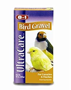 bird health and care