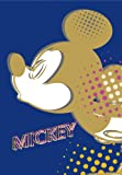 FUJICOLOR album pocket Disney Mickey & Minnie 1PL [Holds 300] L 201 ~ 300 pieces of character Blue 49 196 (japan import)