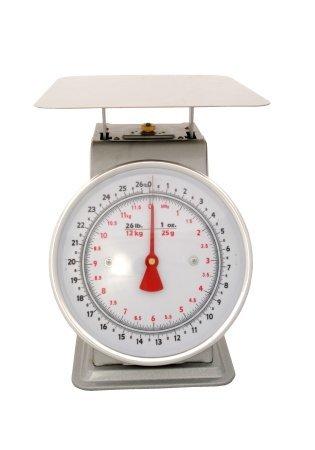 Zenport Industries AZD25 -chelle Dial 25 lb - 12 kg