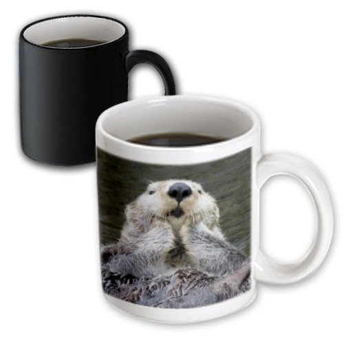 Mug_45621_3 Vwpics Animals - Sea Otter (Closeup) With Its Paws Out Of The Water To Keep Them Warmer.(Enhydra Lutris) - Mugs - 11Oz Magic Transforming Mug