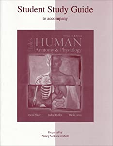 Student Study Guide to accompany Hole's Human Anatomy and Physiology  by Nancy Ann Sickles Corbett