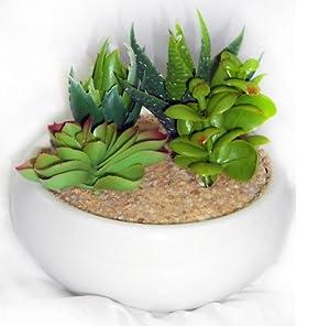 216150 vaso piante grasse finte bianco arredamento regalo for Arredamento regalo