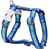 Red Dingo Designer Dog Harness, Medium, Paisley Green and Blue