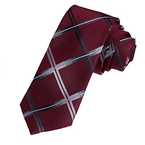 DAE7C04-06-Mens-Woven-Microfiber-Checkers-Leadership-Skinny-Necktie-By-Dan-Smith