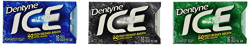 dentyne-ice-mint-variety-12-pack-16-piece-per-pack-total-192-pieces