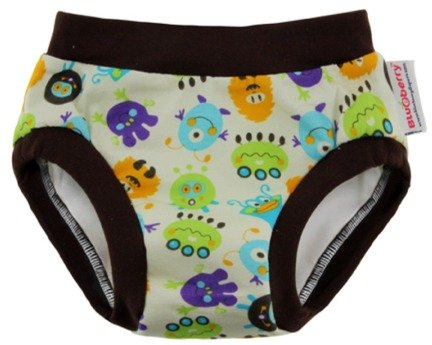 Training Pants Potty Training front-1020602