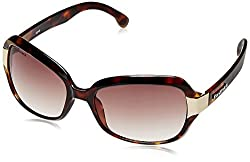 Fastrack Oversized Sunglasses (Brown) (P157BR1F)
