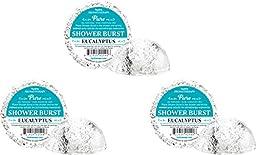 Six (6) Hydra Aromatherapy Shower Bursts - Eucalyptus