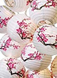 Plum Blossom Paper Lantern Set w/ Light #ml-21