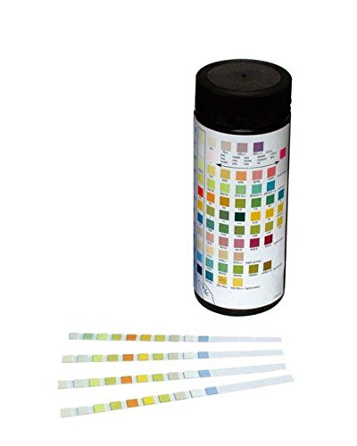 10 PARAMETER URINALYSIS REAGENT TEST STRIPS 100 TESTS PER BOTTLE URINE TEST STRIPS