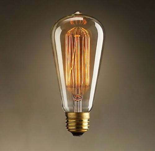 Vintage Edison 40W 110V E26 Base Squirrel Cage Filament Incandescent Light Bulb, White, Pack of 1 (Antique Light Bulb Co compare prices)