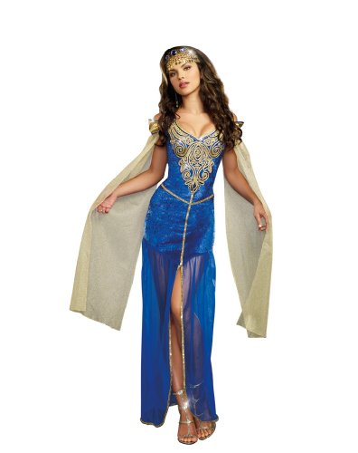 Dreamgirl Women's Sexy Royal Maiden Costume, Medieval Beauty