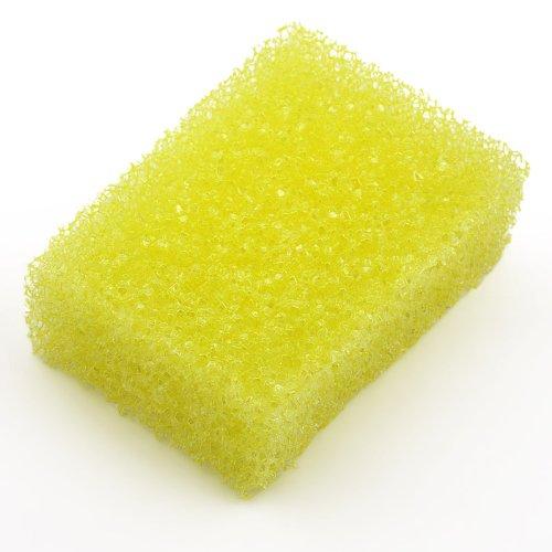 Insect Sponge Coarse-Pored 10 x 7 x 3.5 cm