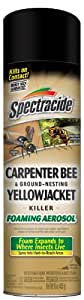 Spectracide 53371-1 Carpenter Bee and Ground Nesting Yellow Jacket Foaming Aerosol, 16-Ounce, Case of 12