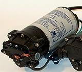 Aquatec Delivery Pump, 1 GPM