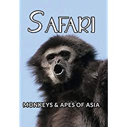 Safari Monkeys And Apes Of Asia