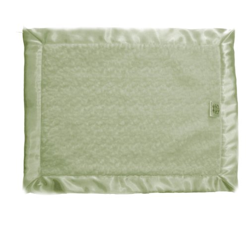 Patricia Ann Designs Chenille Flat Binding Travel Silkie With Satin Trim, Green Apple front-669467