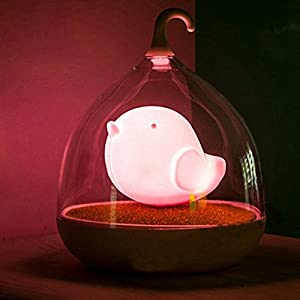 DAYAN Birdcage Recargable LED Luz De Noche Touch regulable-luz nocturna con sensor lámpara De Mesa Pájaro en Diseño Jaula de DAYAN