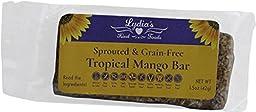 Lydia\'s Organics Bars Tropical Mango -- 12 Bars