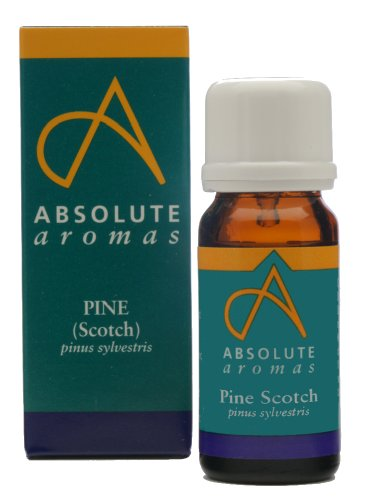 Absolute Aromas Pine Scotch Essential Oil