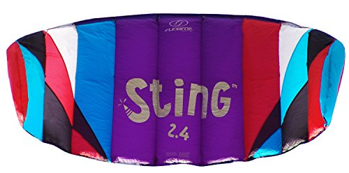 Flexifoil 2.4m2/2.6m Wide Sting 4-line Power Kite with 90 Day Money Back Guarantee! By World Record Power Kite Designer - Safe, Reliable and Durable Family Orientated Power Kiting, Kite Training and Introductory Traction Kiting. (Power Kiting compare prices)