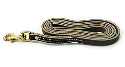 Leerburg's Latigo Leather Dog Leash - Brown - 6 Foot By 3/4 Inch - Handmade By our Amish harness makers - used by professional dog trainers