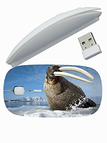 protection-customized-series-animals-ice-tusks-walrus-mountain-spray-wireless-mouse-for-girls-gift-2