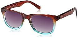 Killer Wayfarer Sunglasses (Brown and Green) (KL3018BFO BRN/GRN 50)