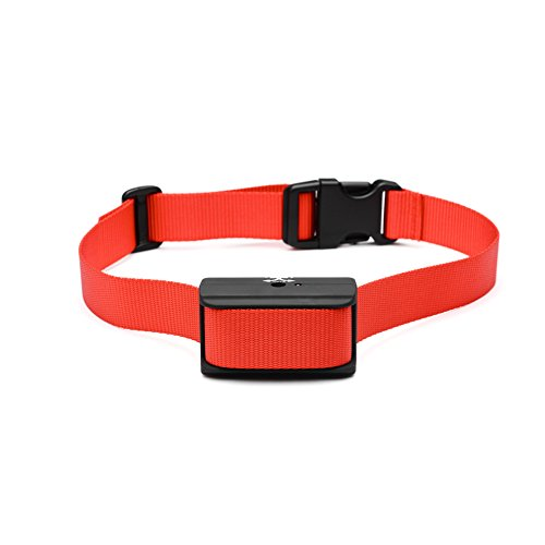 Best Rated Electronic Dog Collars