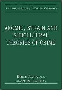 Anomie strain theory essay
