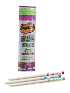 Educational Insights Colored Smencils 10-Pack