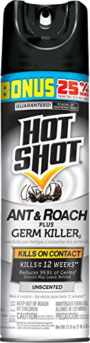 hot-shot-ant-roach-plus-germ-killer2-unscented-aerosol-hg-36300-218-oz