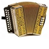 Hohner Accordeon Diatonique - 2915 LUXE