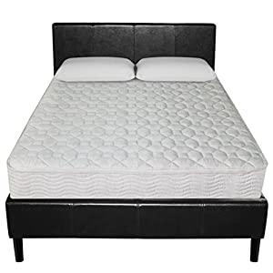 Sleep Master 8-Inch Spring Mattress, Queen