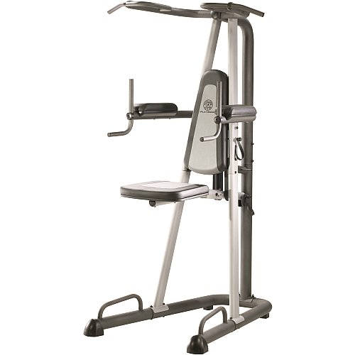 Gym Platinum Assisted Power Tower : Home Gyms : Sports & Outdoors