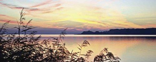 Glas – Bild Artland Wandbild Fotografie Gewässer Perry: Abendrot im Schilf in verschiedenen Größen