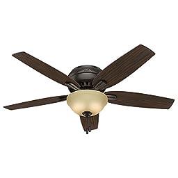 Hunter Fan Company 53314 Newsome Ceiling Fan with Light, 52\