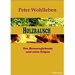 Umschlag von 'Holzrausch: Der Bioenergieboom und seine Folgen'