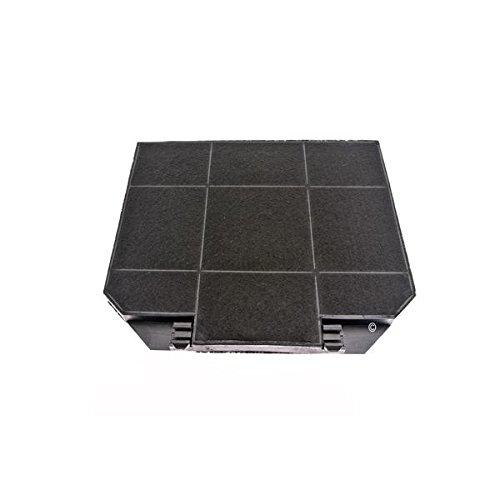filtre-charbon-x1-roblin-5403008-hotte-roblin-natura-murale-1000