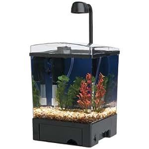 Tetra led aquarium kit 1 5 gallon cube for 5 gallon fish tank petsmart