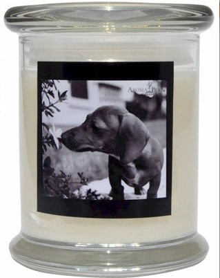 Aroma Paws 311 Breed Candle 12 Oz. Jar - Dachsund
