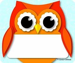 Carson Dellosa Colorful Owl Name Tags (150036)