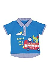 Chirpie Pie by Pantaloons Boy's Polo Neck T-Shirt (205000005609981, Blue, 9 - 12 Months)