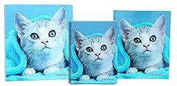 Cute Puppy or Kitten Back To School Set - 3 Ring Binder, Pocket Folder, Spiral Notebook (FLUFFY K)