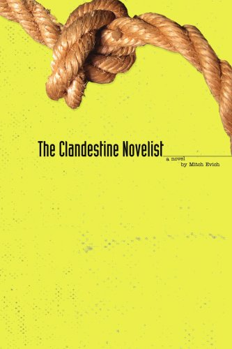 The Clandestine Novelist