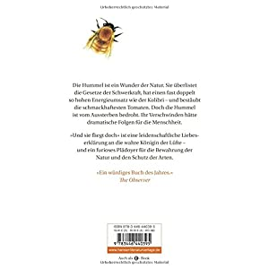 Und sie fliegt doch: Eine kurze Geschichte der Hummel