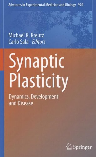 Synaptic Plasticity: Dynamics, Development And Disease (Advances In Experimental Medicine And Biology)