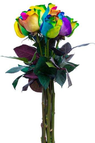 24 Stems - Fresh Cut Rainbow Roses From Flower Explosion